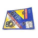 OIL SEAL KIT KC VEGA-ZR